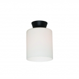 BF58, 25w B22, frosted glass with black metalware, 20cm high