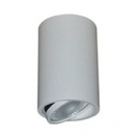 Daro 12w 4000k 800 lumens, white finish, surface mounted, centre tilt, 38 degree beam angle