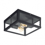 EX77, 2 x 60w E27, black metalware, clear glass, 290mm square